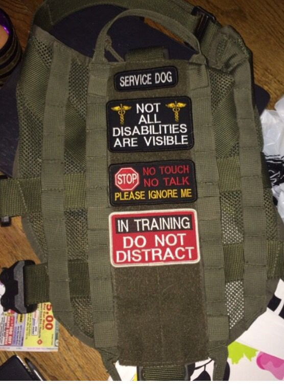 Military working dog training manual