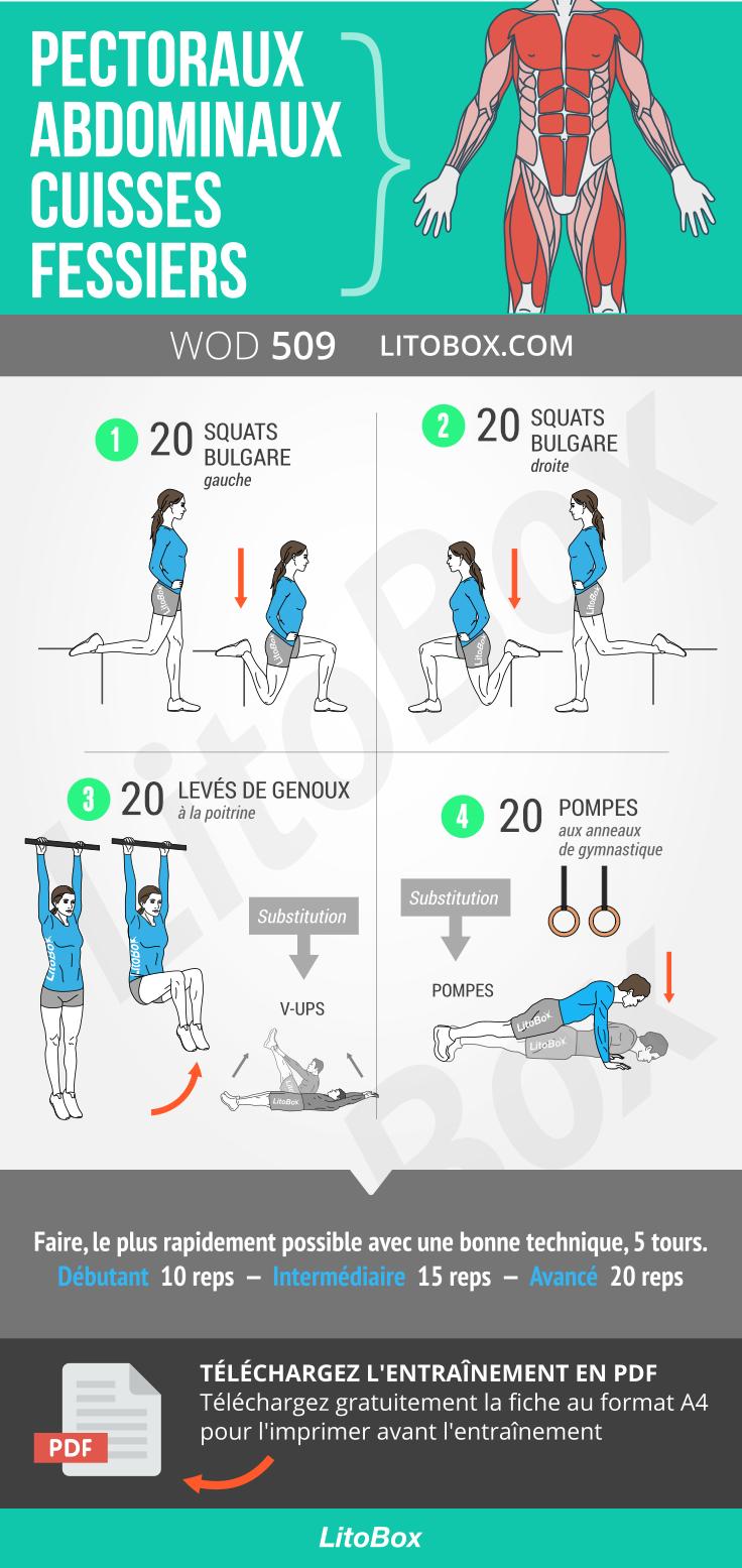 Programme de musculation chez le footballeur pdf